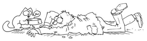 feedme - Simon's cat, une calamité de chat
