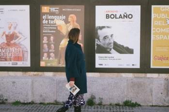 Inmersión en Roberto Bolaño