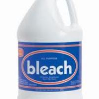 Word Mystery: bleach / lejía / eau de Javel