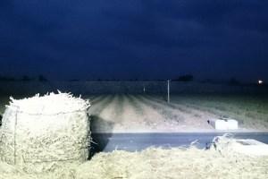 サトウキビ畑作業灯照射写真