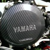 sơn carbon xe máy