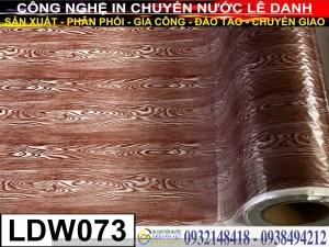 FIlm in giả gỗ LDW073