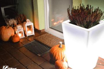 oświetlenie ogrodowe hallowenn donica podświetlana led