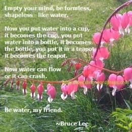 be-water_bruce-lee-kopia