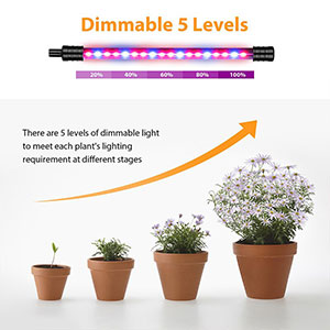 Grow Lights 02 | LED Corner