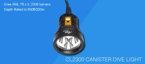 CL2300_1