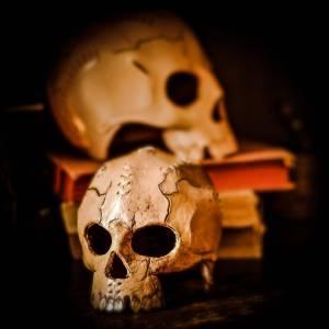 Skull / Deco aus Leder