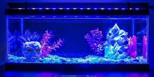 Akvárium ledvilágítás