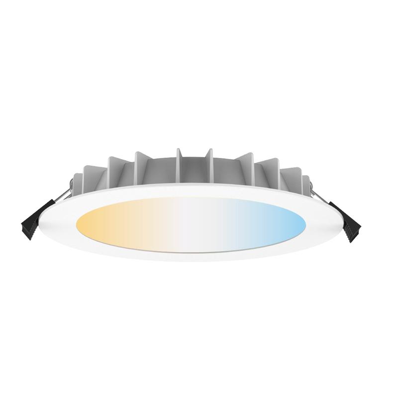 Smart Downlight DL21