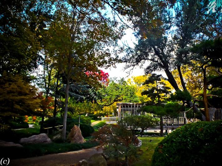 Japanese_Zen_Garden-4