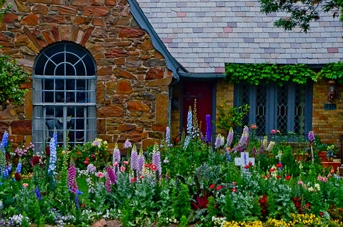 Texas April Garden with Foxglove and Lupine