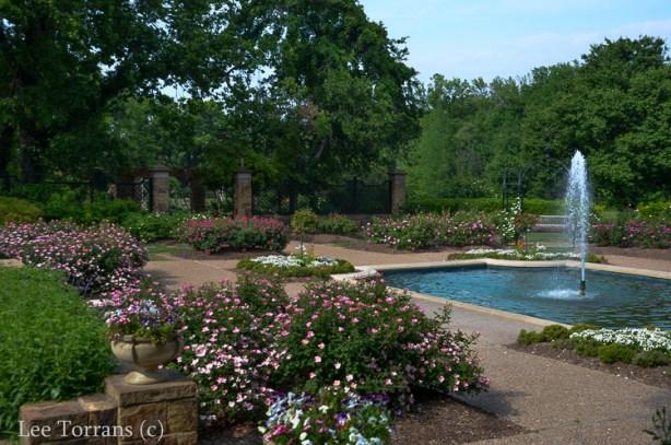 Fort_Worth_Rose_Garden_Texas_Lee_Ann_Torrans