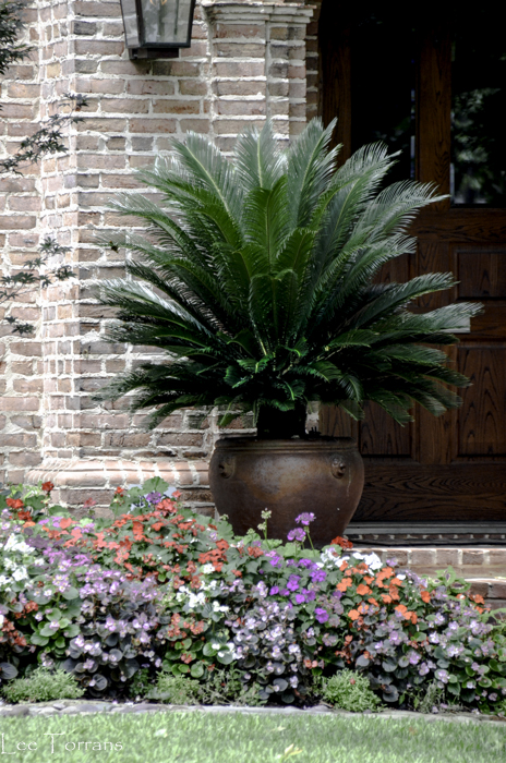 Dallas_Best_Landscaping_Design_Lee_Ann_Torrans_Dallas_Gardening-5