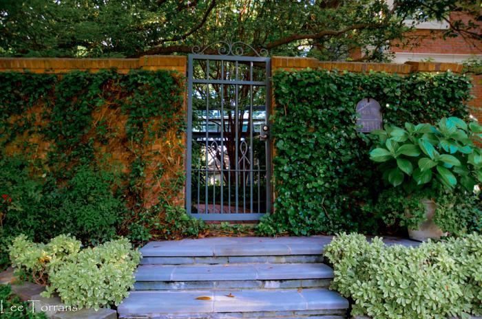 High_Walls_Gardening_Lee_Ann_Torrans_Dallas_Gardening-2