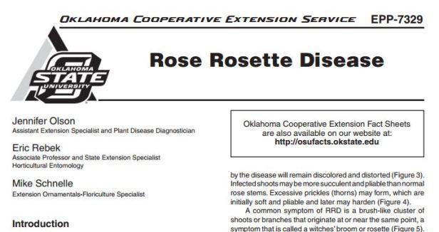 OSU Rose Rosette Disease Fact Sheet