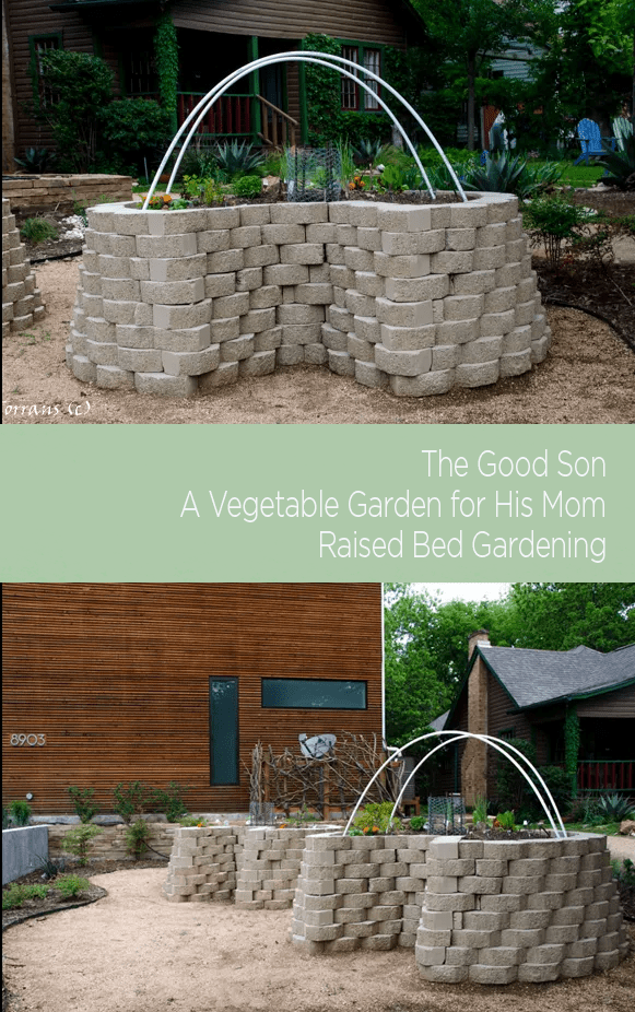 Concrete raised gardening beds can leach out PH from your soil. Learn how to address that issue.