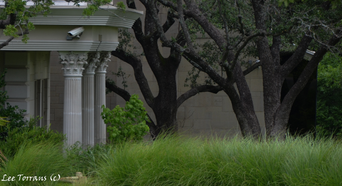 Here are Corinthian Columns topped with Acanthus leaves. Planted with native grasses, day lilies, live oaks.