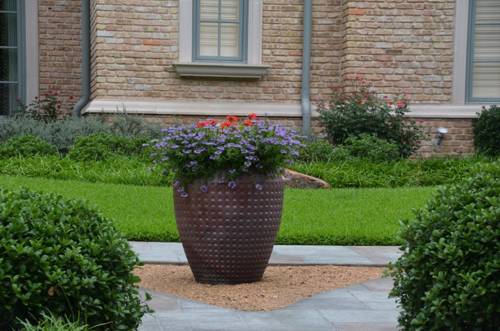 Top flowers for container gardening in Dallas landscaping.