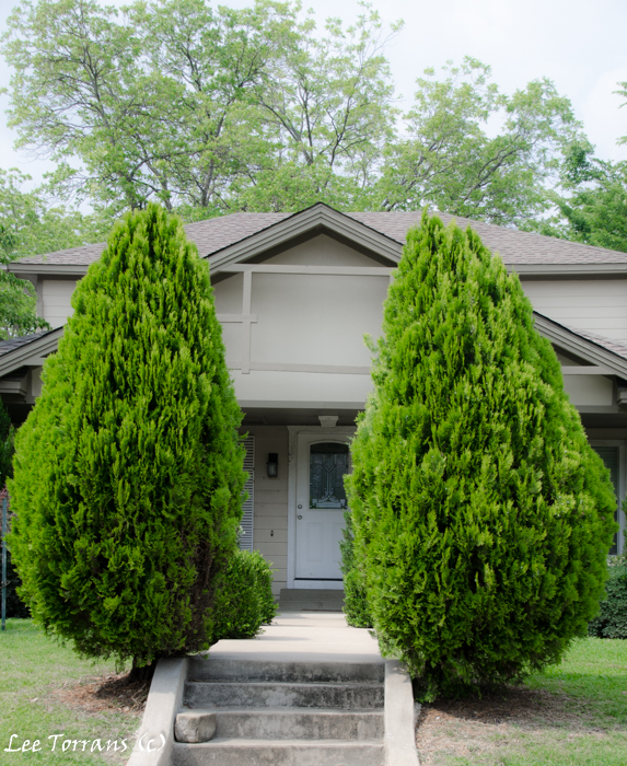 Vickery Park Historic Dallas Neighborhood: Cedar Elms