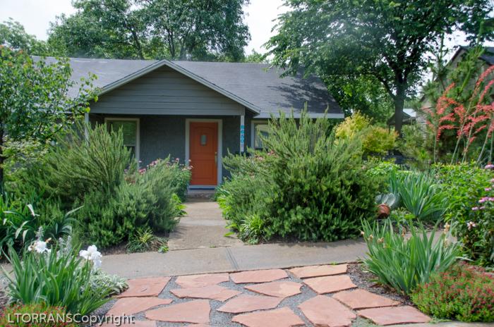 Drought resistant landscape design in a cottage garden