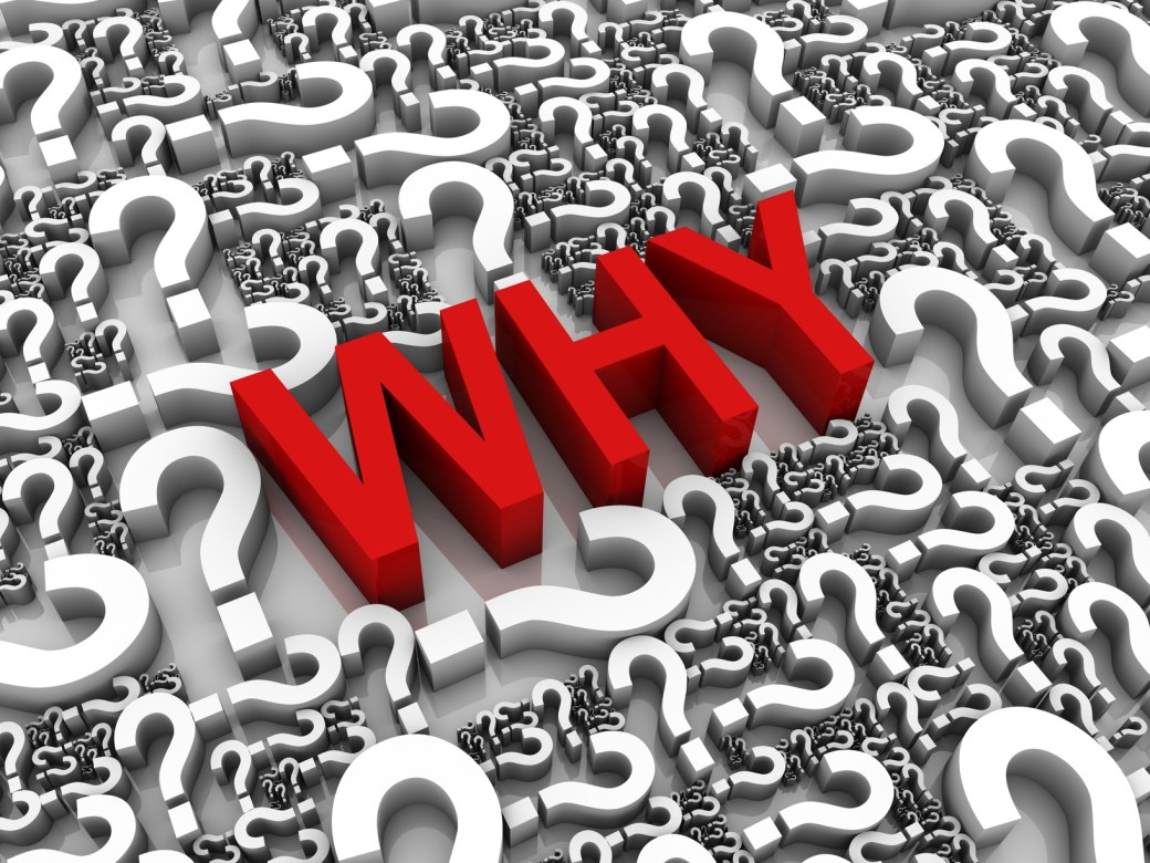 Image result for why?