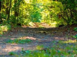 Hollis Street Path; Dunstable, MA