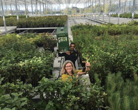 Arium Greenhouse