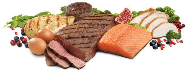 Met het Vitadis Slanker Leven Plan heeft je zoveel meer te bieden dan klassieke eiwit shake's