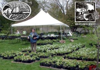 Village Green Plant Sale - photo by Keith Burnham