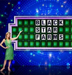 Black Star Farms on Wheel of Fortune