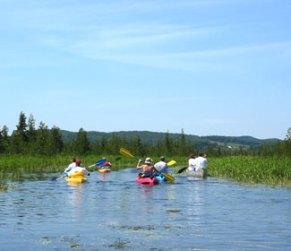 Kayakers on Victoria Creek (Cedar River)