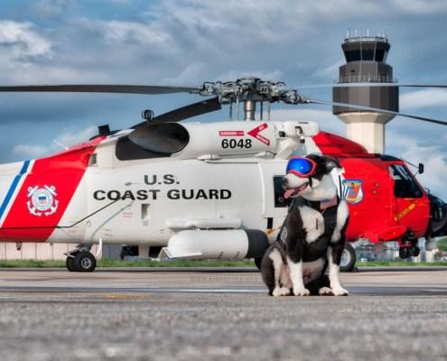 Memorial for US Coast Guard K-9 Piper this Saturday