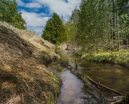 May Day at Houdek Creek