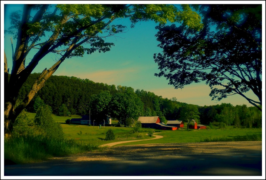Farm on South French Road by John Levanen