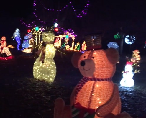 You can't beat Herman's Holiday Lights in Suttons Bay!