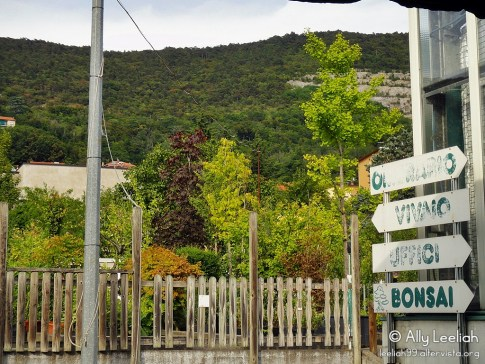 Vivaio a San Giovanni, Trieste © leeliah99.altervista.org
