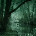 marécage boueux nuit