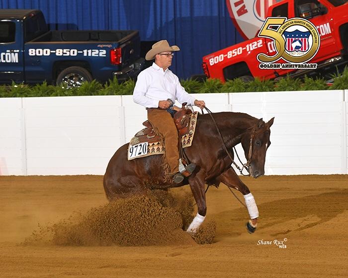 Reining Horses | Mancini Training Center | Mancini Training