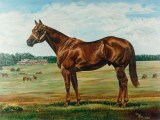 Commissioned oil on canvas traditional horse portrait of the sire Mr. Cabin Bar, by Lee Mims