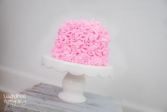 Li cake smash-8