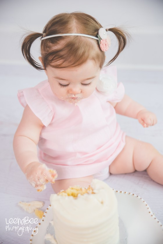 Dublin cakesmash first birthday-13