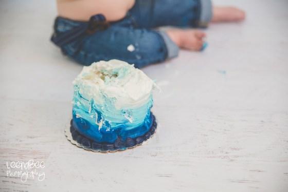 Cake smash dublin ohio-15
