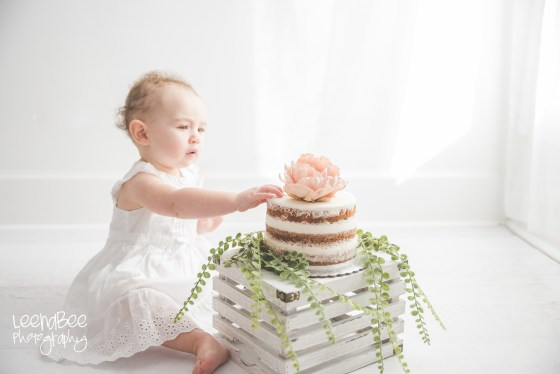 Boho First Birthday Cake Smash Dublin Ohio-17