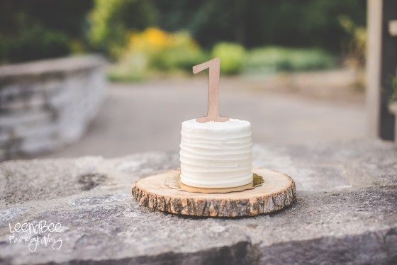 Dublin Cake Smash Photography-9