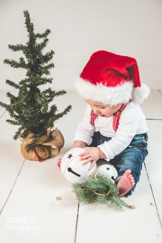 Dublin Ohio Christmas Photography Sitter Session-4