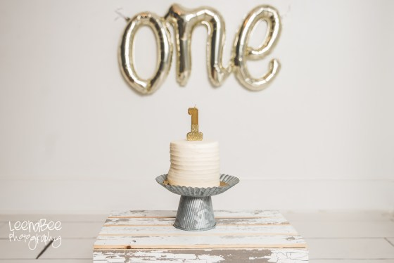Dublin ohio first birthday cake smash photography-6