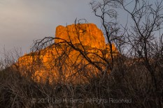 Dramatic sunset glow on iconic Casa Grande peak in the Chisos Mountains, viewed from Chisos Basin Campground, Big Bend National Park, Texas, USA