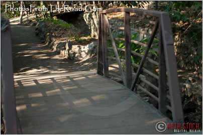 Ferndell in Los Angeles' Griffith Park