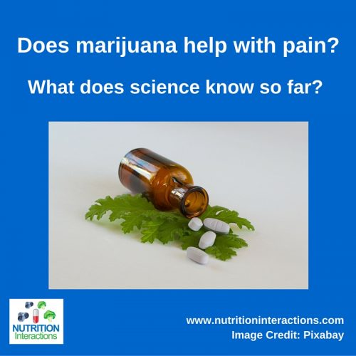 Medical Marijuana for Fibromyalgia and Pain