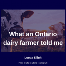 "What an Ontario dairy farmer told me, and a bit about Canada's ""Moo U"""